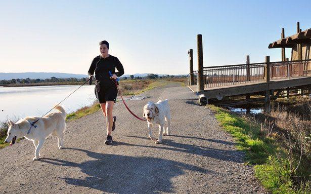 trcanje sa psima u prirodi Zašto je trčanje bolje od teretane?