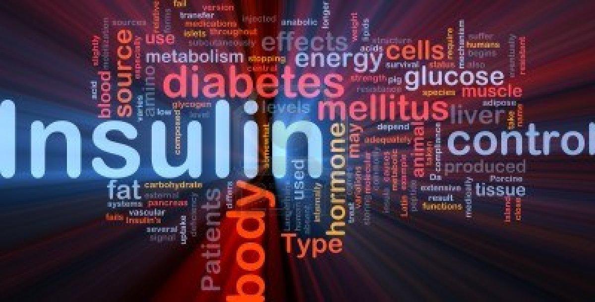 Master insulin  – neka radi za vas