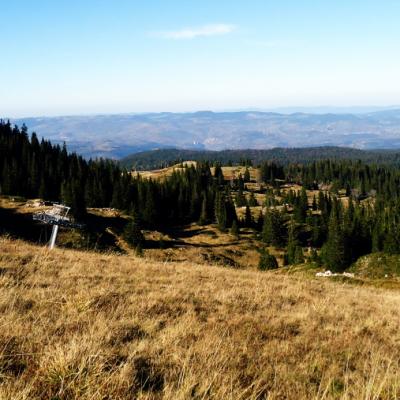 Jahorina Ultra Trail: drvo umesto medalje za pobednike!