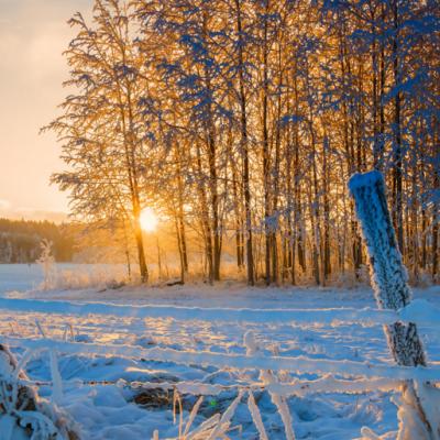 Zimska idila: trenirajte i uživajte sa tri treninga nedeljno!